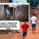Governo Bolsonaro aumentou miséria no Nordeste, afirma Le Monde