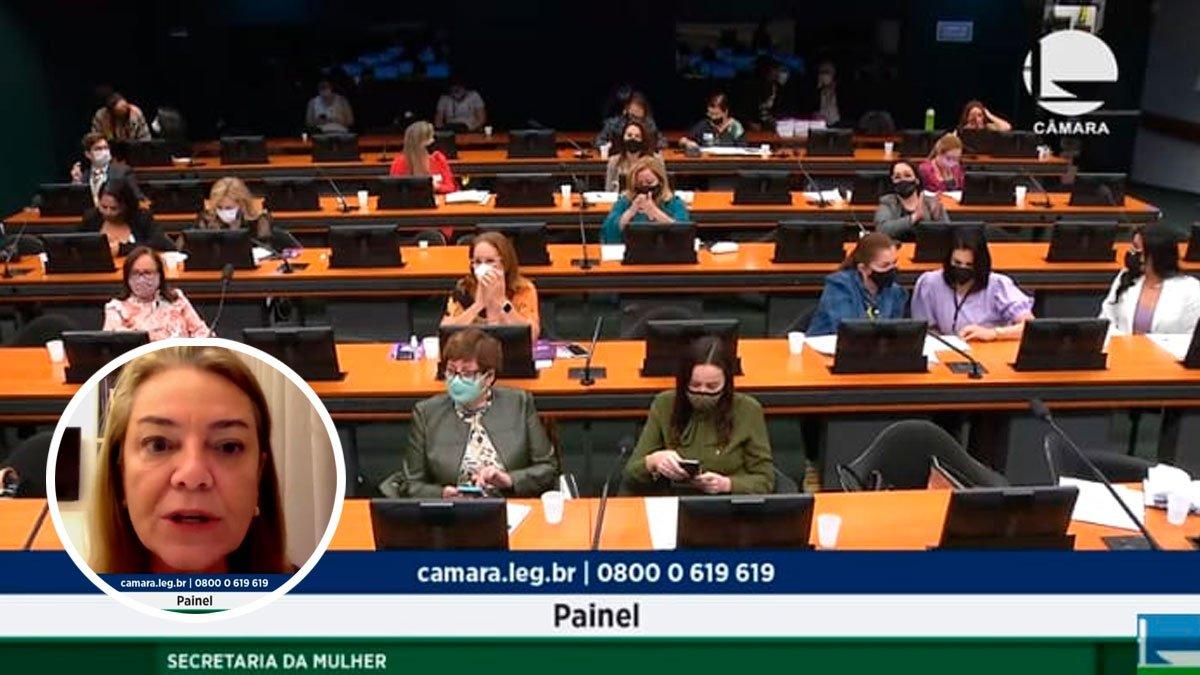 """Deputada Fabíola Mansur sugere a campanha nacional """"Mulheres pelos 18% de vagas""""."""